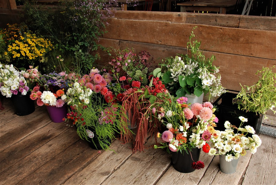 Blog posy gang when a dozen or so flower farmers bring their best blooms to the dinner table this is the spread its really really good mightylinksfo